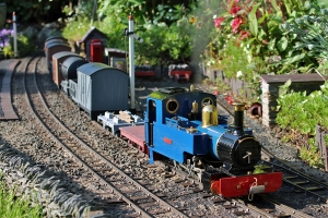 Lady Anne 'Sophie' on the Waltham & Lincolnshire Coast Railway - Keith Wilson -