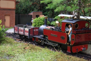 A scene on Mike Lynch's 'Millers Meadow Light Railway - Mike Lynch -